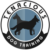 Tenacious Dog Training