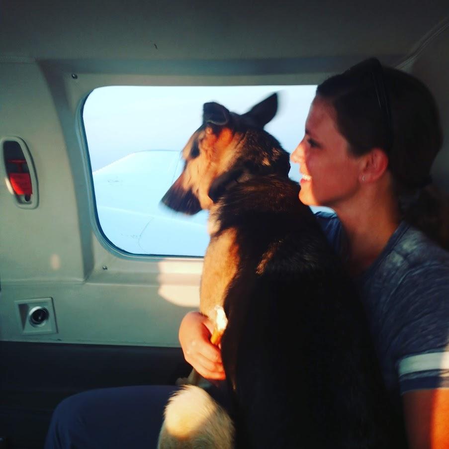 Search Dogs, South Dakota.