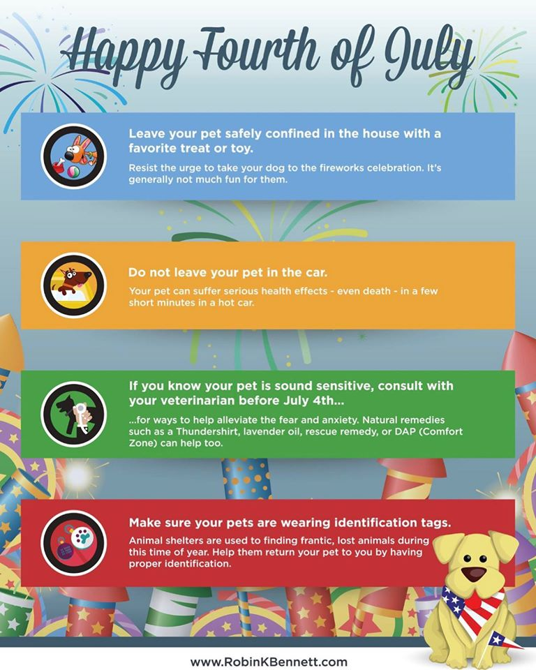 Fourth of July Training tips, from Tenacious Dog Training.